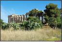 SICILE-Selinunte